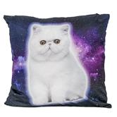 cosey cushion cover 45x45, cushion cover with motif for decorative cushion, sofa cushion - different motifs Polyester D3 Space Cat