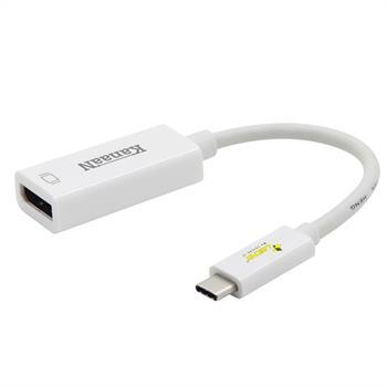 Adapter | USB-C zu Displayport | 2k